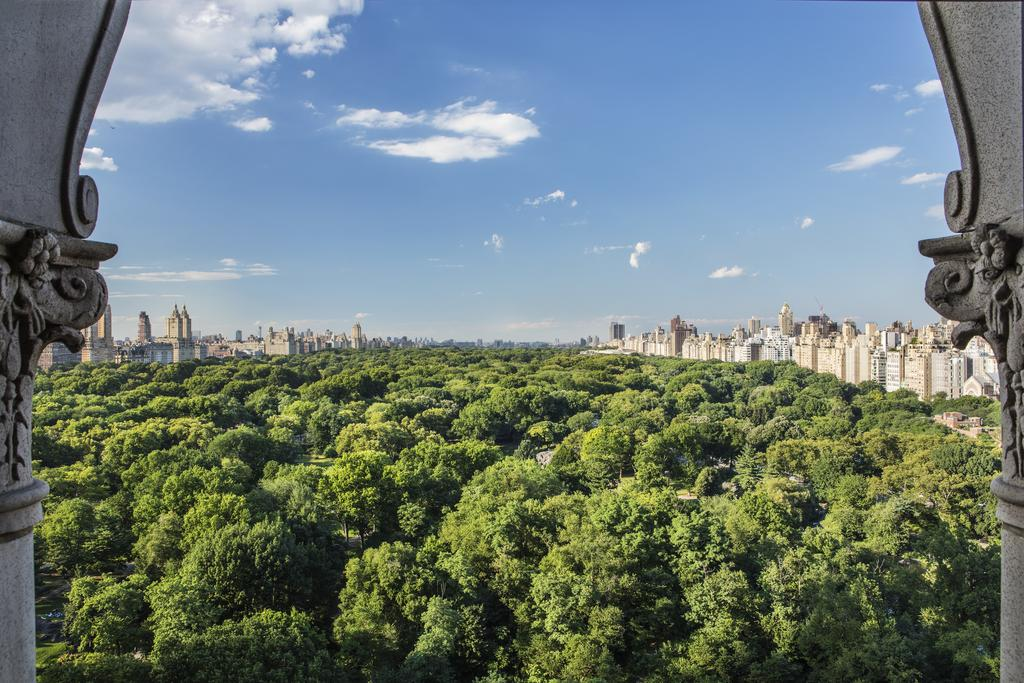 The Ritz-Carlton New York, Central Park, New York 7